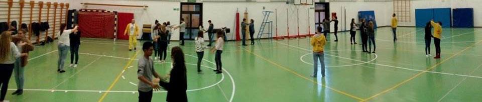 Vip-venezia progetto contatto scuole portogruaro